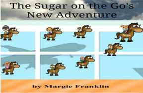 The Sugar on the Go's New Adventure by Margie Franklin